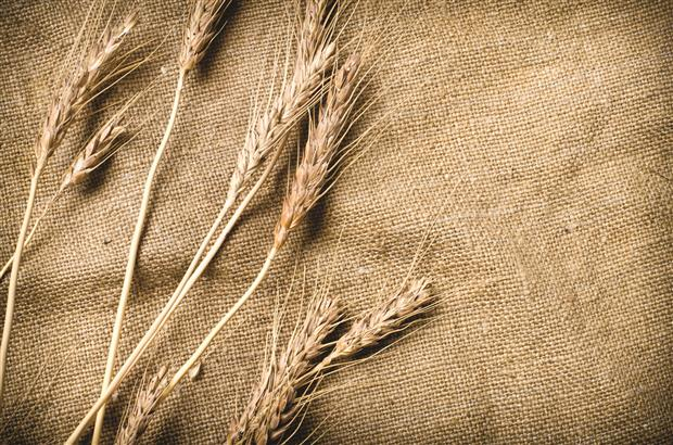 Wheat on natural fabric